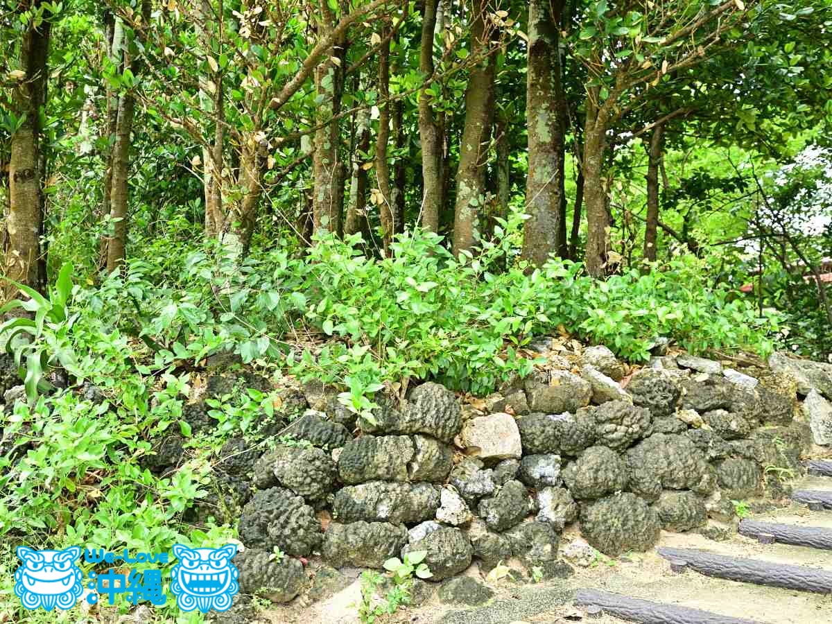 ボウズサンゴの石垣