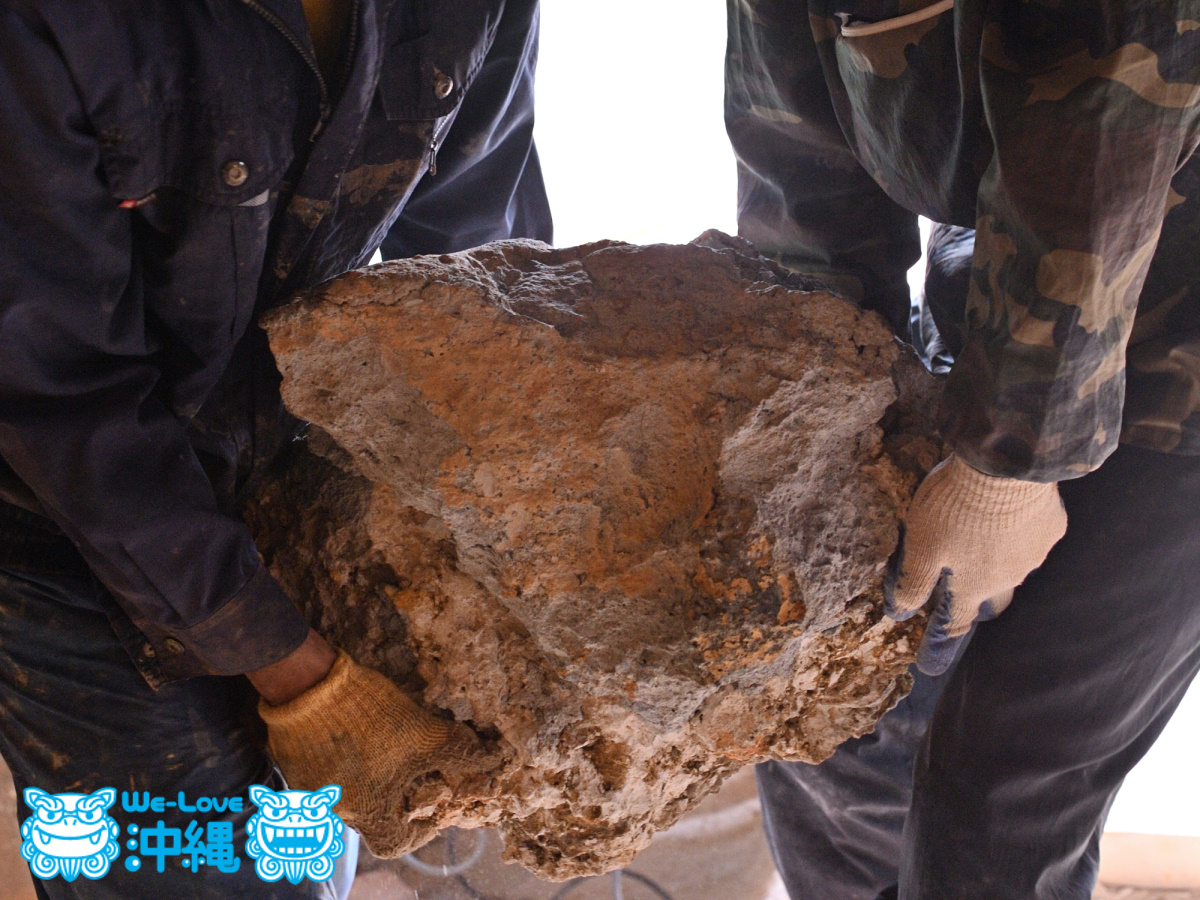 北窯壁作り_30_琉球石灰岩を運ぶ