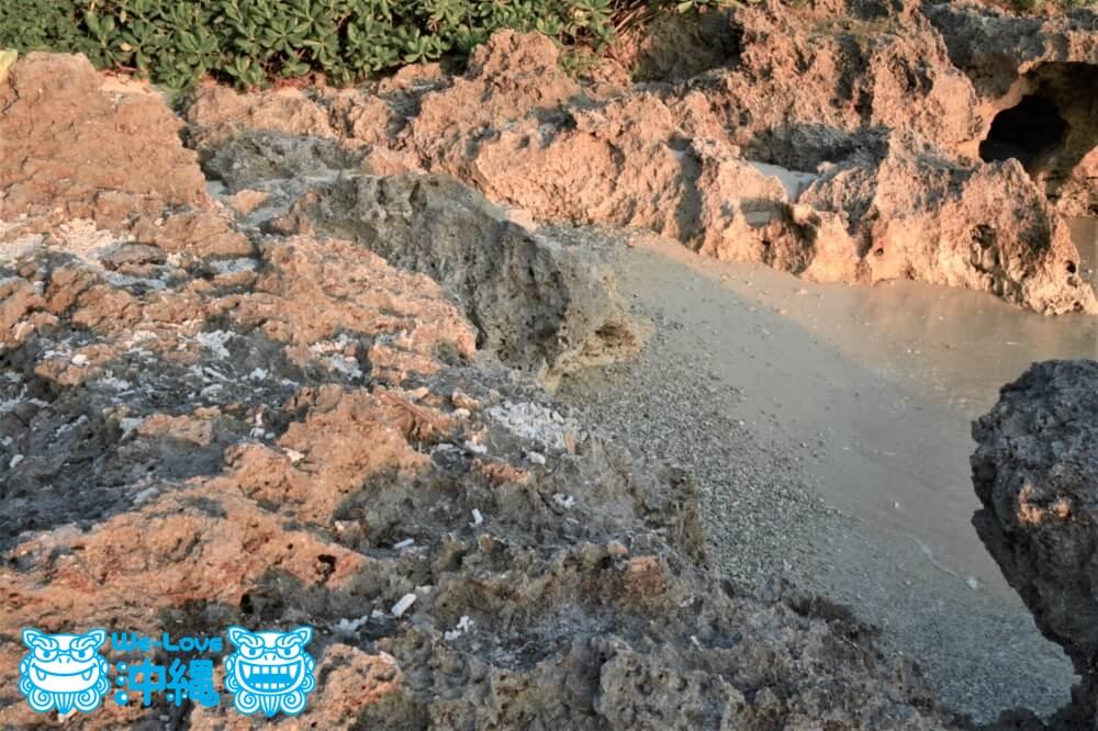 鋭く尖った石灰岩のビーチ