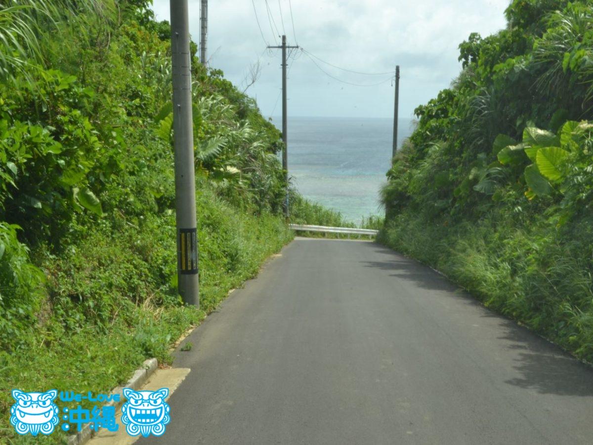 新城海岸へ続く坂道