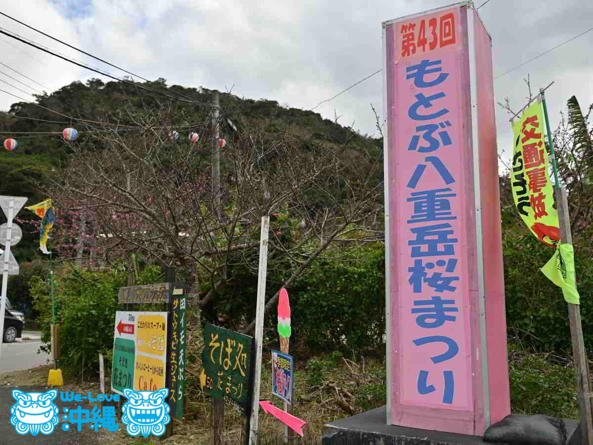 もとぶ八重岳桜まつり看板